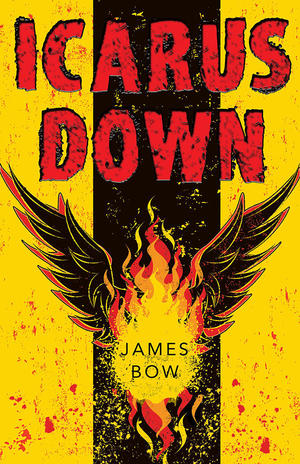 icarus-down-cover-600px.jpg