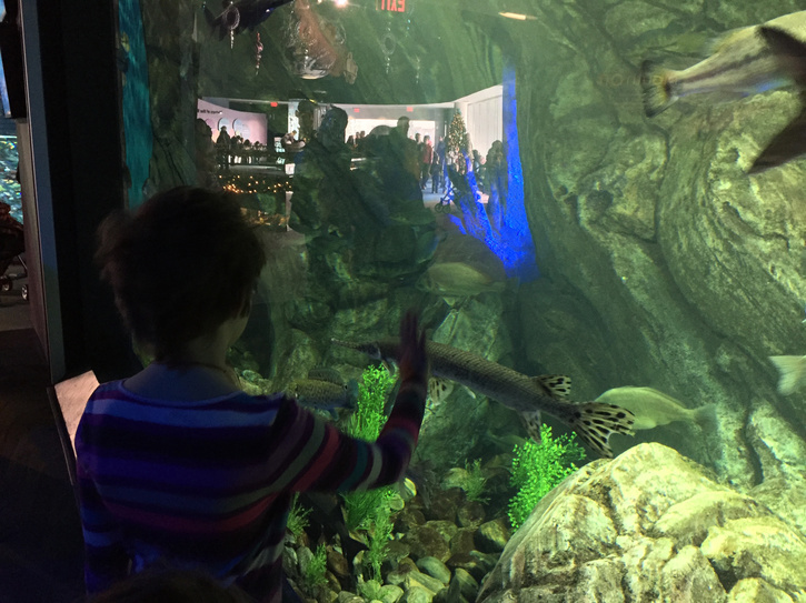 vivian-at-aquarium.jpg